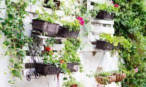 5 creative diy ideas to grow a vertical