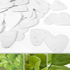 Biodegradable Paper With Flower Seeds Plantable Seed Confetti Catalog Botanical Paperworks
