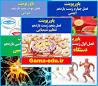 Bildergebnis für پاورپوینت زیست یازدهم فصل ۴ | تنظیم شیمیایی