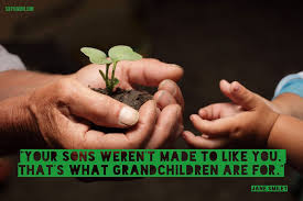 Quotes About Grandchildren Delectable Grandchildren Quotes