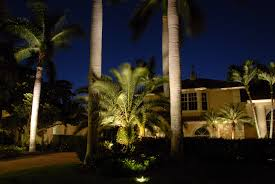 light up palm tree outdoor designs