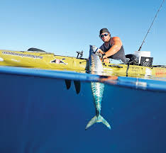 Broward Kayak Fishing Forecast April 2018 Coastal Angler