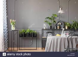 Rosa Blumen Und Pflanzen In Grau Esszimmer Interieur Mit