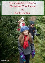 Christmas Tree Farm Guide New York New Jersey Connecticut « CBS Christmas Tree Cutting Nj