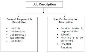 general and specific purpose of job description benefits analyst job description