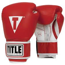 Title Boxing Gloves Pro Style Training Review Glovespot Com