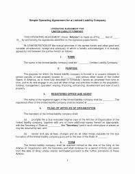 Standard Partnership Agreement Template Awesome Sample Business ...