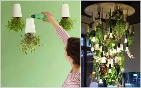 Kitchen Counter Herb Garden Ideas