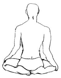 Afbeeldingsresultaat voor yoga sitting poses drawings