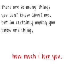 How Much I Love You Quotes Adorable Download Quotes About How Much I Love You Ryancowan Quotes