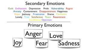 Emotion Regulation Primary Secondary Emotions Dbt Up Dbt