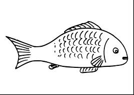 guitar coloring pages bass large size of fishing free superb cartoon fish with beautiful and pa