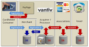 paypage overview introduction figure 1 1 vault figure 1 2