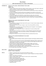 It Project Manager Resume Sample Manager Senior Project Manager Resume Samples Velvet Jobs 59