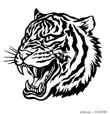 虎 トラ とら 入れ墨のイラスト素材 Pixta