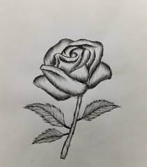 Easy To Draw Roses How To Draw A Rose Easy For Beginners Youtube
