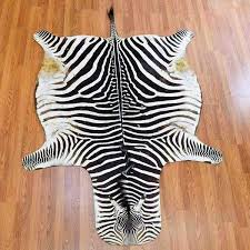 zebra skin rug for taxidermy s real rugs south africa
