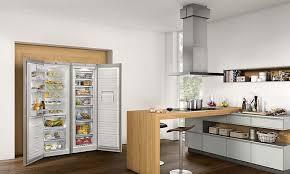 Der Side By Side Kühlschrank Ist Die Planungslösung Für Den Großen  Haushalt, Die