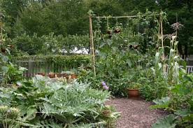 Small Picture kitchen garden KITCHENTODAY