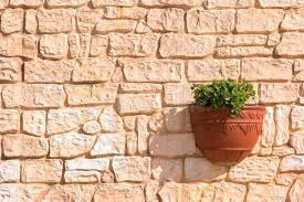 hanging pictures on brick green plant in flower pot hanging on old brick wall stock