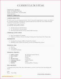 Resume Format Doc Examples 40 Creative Resume Design Resume