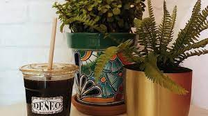 Before you sit down to write your business plan, you should know what equipment is needed to open a coffee shop. Popular Coffee Shops Press Peixoto To Open New Locations In Gilbert