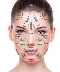 When Skin Care Professionals Perform A Skin Analysis They