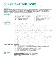 Sample Resume For Hr Staffing Coordinator Resume Staffing Coordinator Resume Hr 58