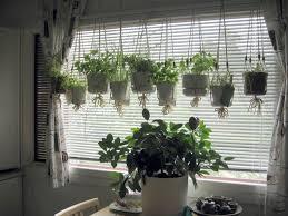 Kitchen Window Herb Garden Kit Windowsill Planter Planter Designs Ideas