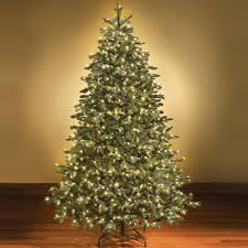 Buy The 10 Ft Prelit North Valley Spruce Full Artificial 12 Ft Fake Christmas Tree