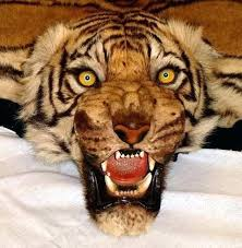 tiger rug lion head mountain taxidermy fake skin with full