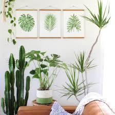 Living Pattern Custom Design Ideas
