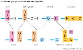 Monomer And Polymer Chart Monomer Chemical Compound Britannica