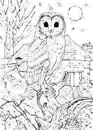 Free Printable Mandala Coloring Pages And Owl Mandala Coloring Pages