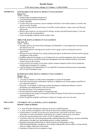 Product Management Resume Digital Product Management Resume Samples Velvet Jobs 70