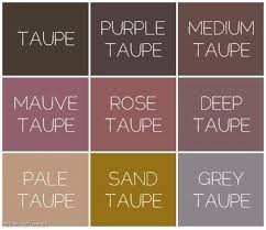 This month we're crazy about Taupe! Come check out scarves, jackets,