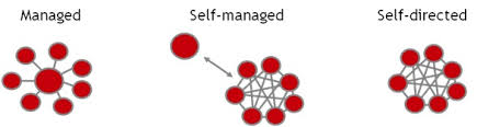 self managed teams building self managed teams