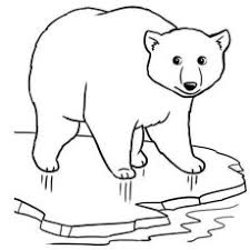 Small Picture Top 10 Free Printable Polar Bear Coloring Pages Online