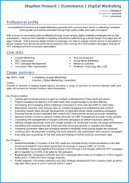 Online Marketing Specialist Sample Resume Proposal Email Format