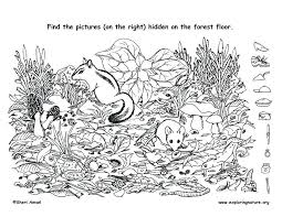 Find The Hidden Objects Printable Find The Hidden Things On The ...