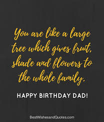 Birthday Quotes For Dad Impressive Happy Birthday Dad 48 Quotes To Wish Your Dad The Best Birthday