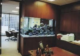 aquarium for office. Buy Office Aquarium For P