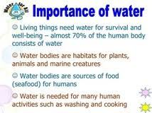 essay on importance of water for kids professional cv writing essay importance of water for kids