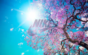 Here you can find the best nike sb wallpapers uploaded by our community. Nike Sb Wallpaper Girl Page 1 Line 17qq Com