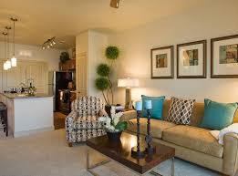 College Living Room Decorating Ideas Simple Design