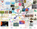 Progressive Era Mind Map