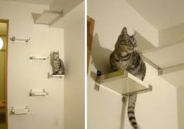 Floating Shelves For Cats Cool Cat Condos That Are Hip And Modern Floating Shelves Australia