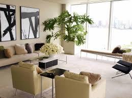 pretty living room plant plants wall planters shelf ideas india delectable big decor decoration the corner