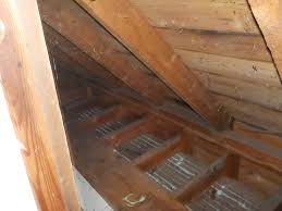 The Basics Mayo Home Inspections - Bathroom venting into attic