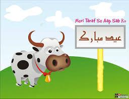 Image result for eid ul azha pics